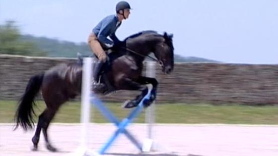 approach strides jumping